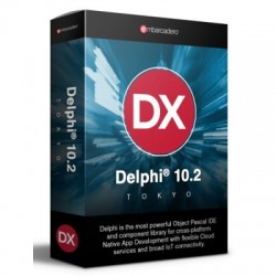 Delphi Professional